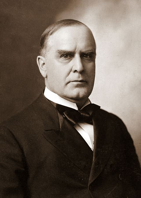 William McKinley httpsuploadwikimediaorgwikipediacommonsaa