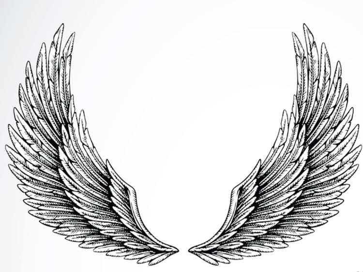 Wing Wing Tattoo Meaning Ideas Images