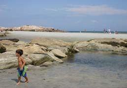 Wingaersheek Beach httpswwwbostoncentralcomppixactivities668jpg