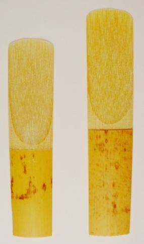 Woodwind instrument