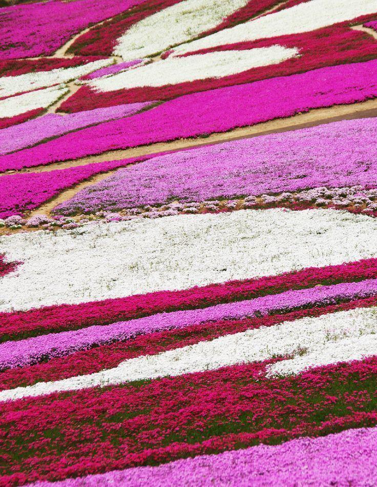 Yokote, Akita Beautiful Landscapes of Yokote, Akita