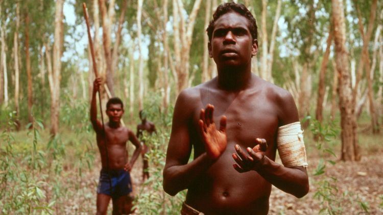 Yolngu Boy Education Programs