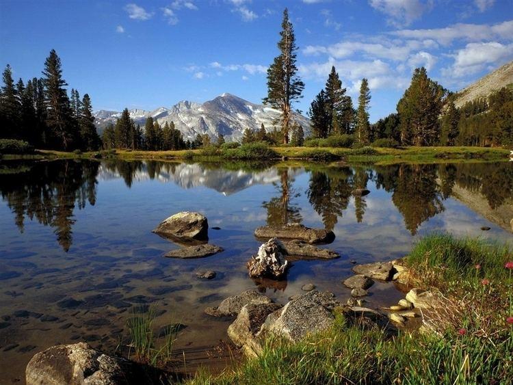 Yosemite National Park Beautiful Landscapes of Yosemite National Park