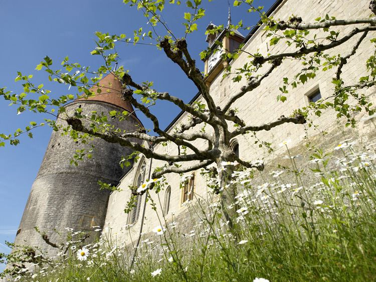Yverdon les Bains in the past, History of Yverdon les Bains