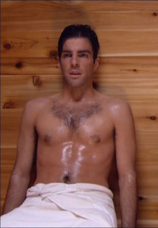 Zachary Quinto American actor and producer Zachary Quinto who acted in Star Trek