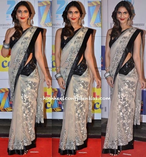 Zee Cine Awards Zee Cine Awards 2014