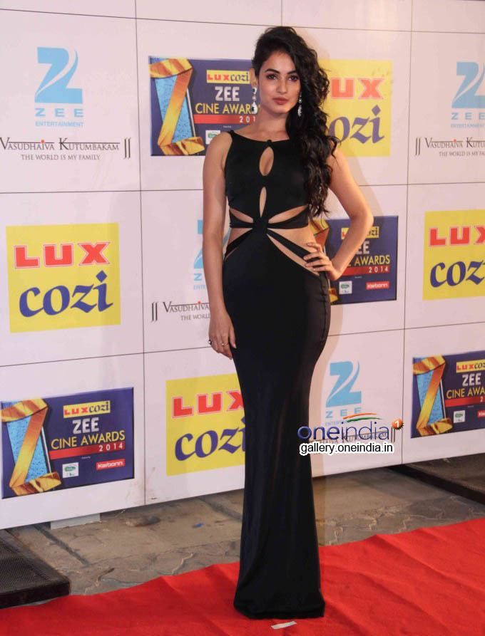 Zee Cine Awards Zee Cine Awards 2014 Photos Images Pics 415256 Filmibeat Gallery