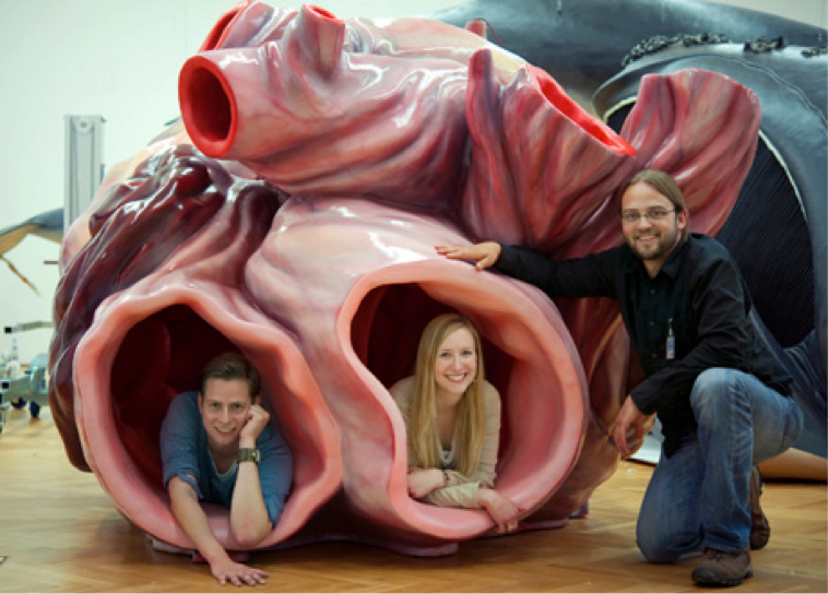 The Biggest Heart Ever Preserved The Biggest Heart Ever Preserved