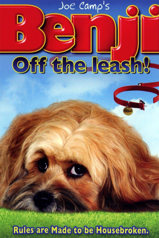 Benji: Off the Leash! wwwgstaticcomtvthumbmovieposters84725p84725